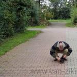 06.-Op-weg-naar-Alkmaar