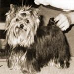 31.-Ch.Wildwier-Pomp-N-Circumstance-1-5-1959