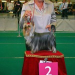 7.-ROTTERDAM-jeugdklas-2U-M.Purkhiser-USA